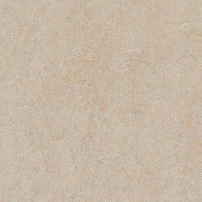Forbo Marmoleum Click Cinch Loc Silver Birch