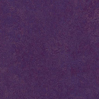 Forbo Marmoleum Modular Colour Purple T3244