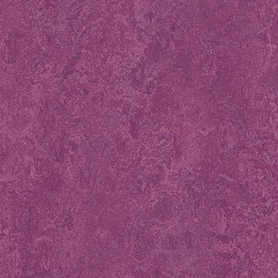 Forbo Marmoleum Modular Colour Summer Pudding