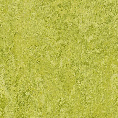 Forbo Marmoleum Modular Colour 20 x 20 Chartreuse