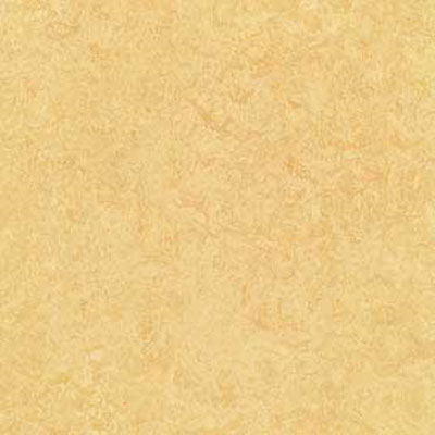 Forbo Marmoleum Composition Tile (MCT) Butter