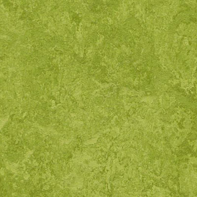 Forbo Marmoleum Composition Tile (MCT) Green