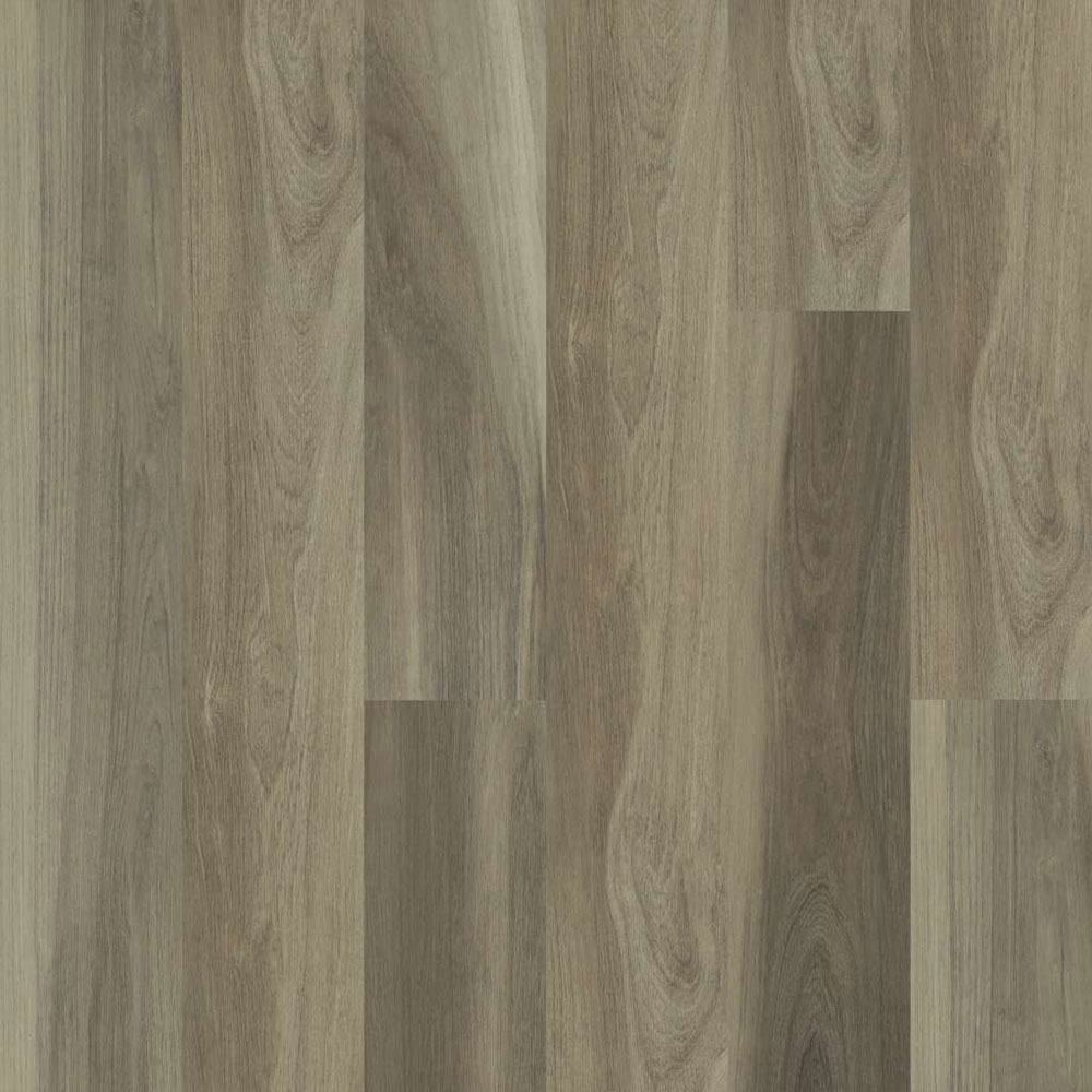 Shaw Floors Cathedral Oak 720C Plus Chestnut Oak