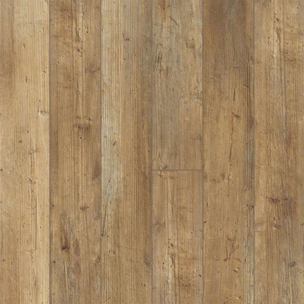 Shaw Floors Paragon 5 Plus Touch Pine